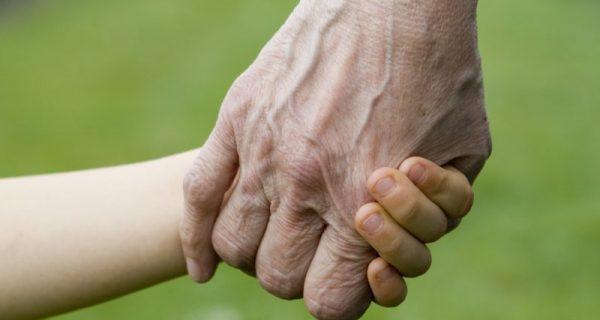 netos: um legado de amor