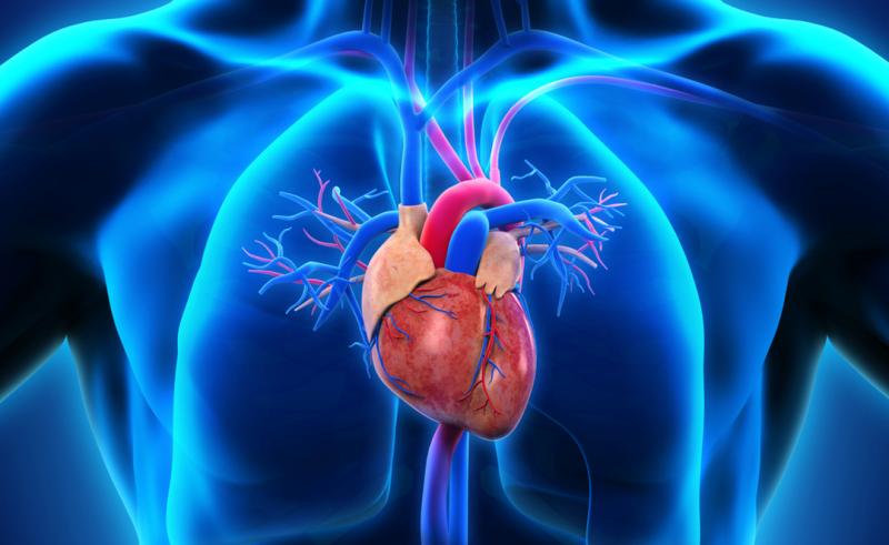 Resultado de imagem para doenças cardiacas