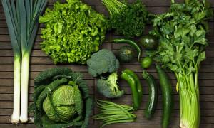 verduras verdes-escuro para idosos