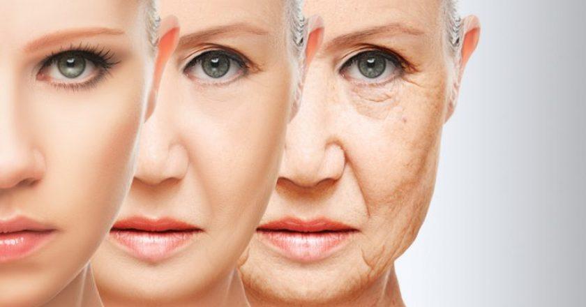 colágeno e envelhecimento