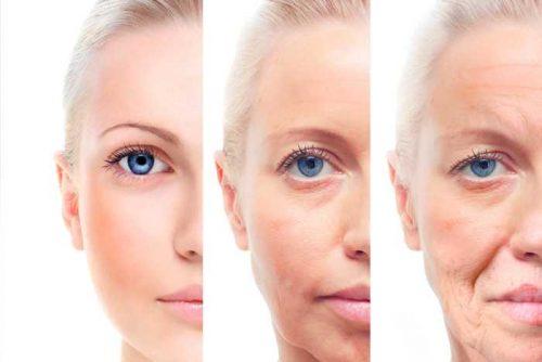 colágeno envelhecimento