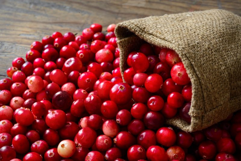 Cranberry, oxicoco ou mirtilo