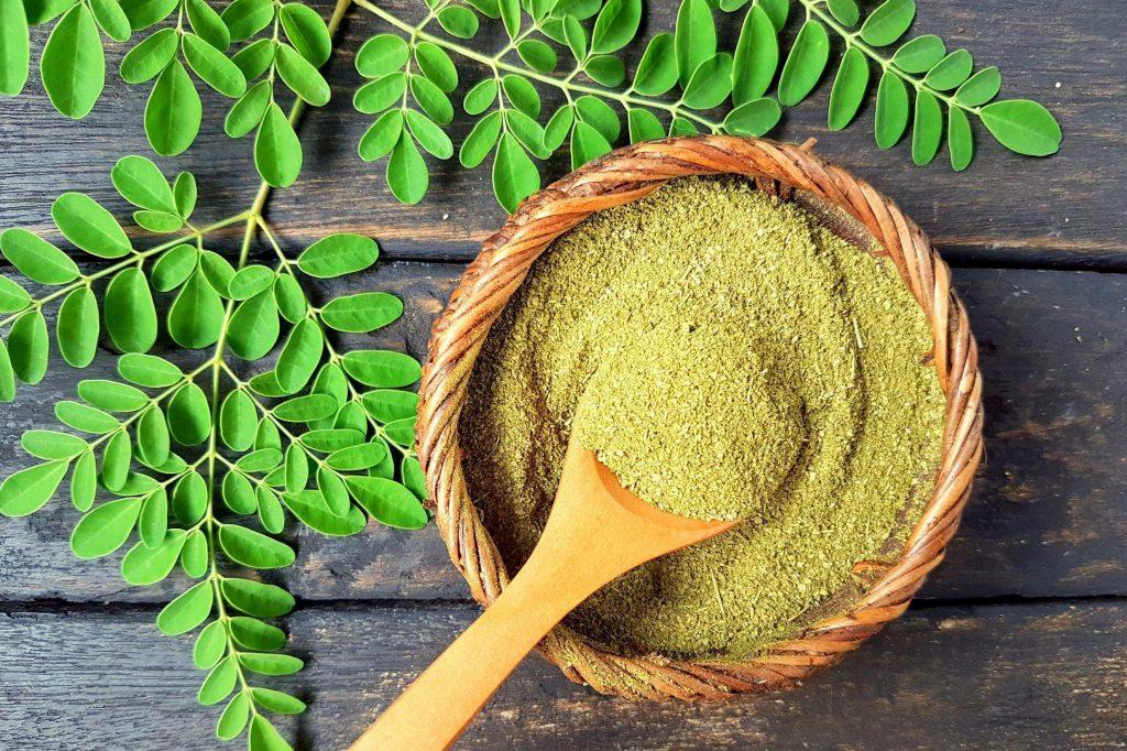 O vegetal é originário da Ásia e da África e cresce em áreas semiáridas tropicais e subtropicais. Afinal, maspara que serveamoringa?
