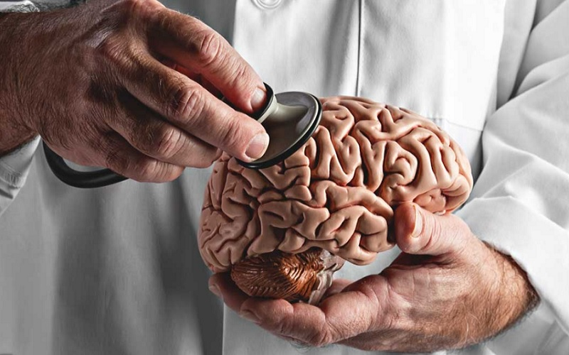 alterações no cérebro e memória dos idosos