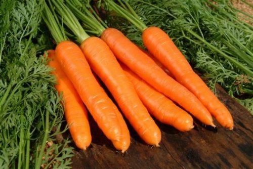 benefícios da cenoura para os idosos