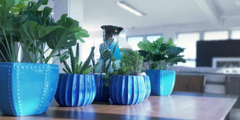 decoração com vasos na casa da vovó