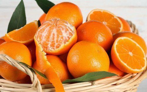 laranja ou mexerica. Qual a melhor?