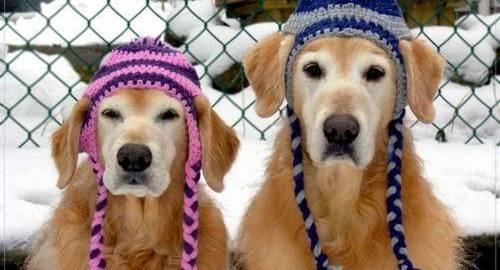 como os idosos devem se aquecer neste inverno