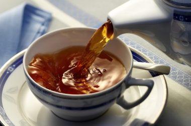 chá de boldo para os idosos