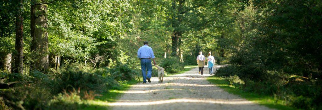 Estar em contato com a natureza na terceira idade só traz benefícios