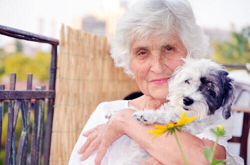 Terapia com animais para idosos