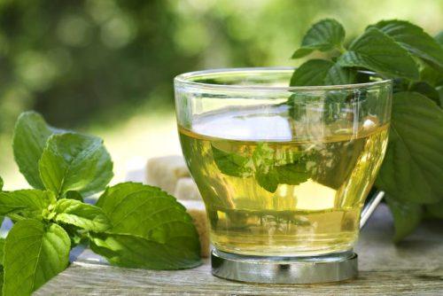 chá de boldo faz bem aos idosos