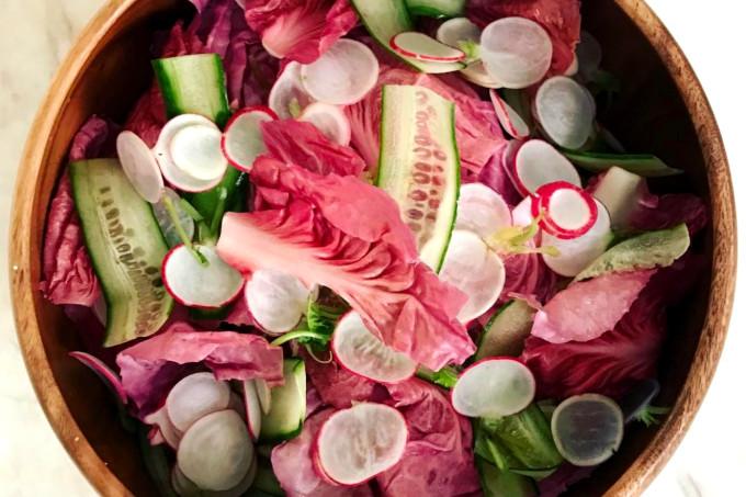 radicchio rosa verdura pouco conhecida
