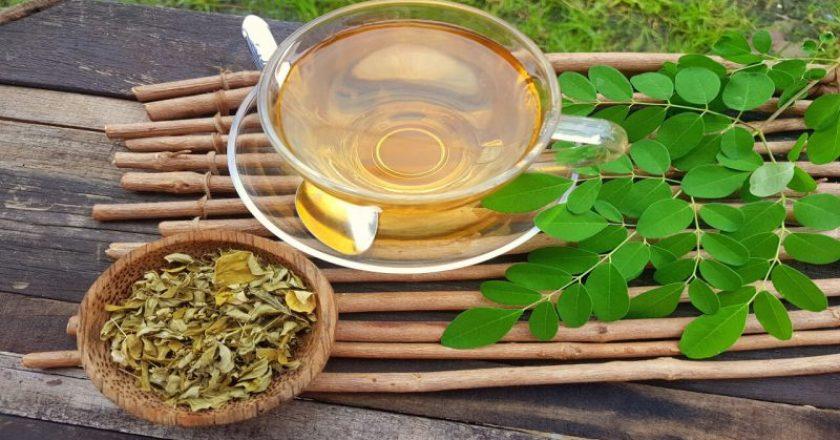 chá de quebra-pedra para idosos