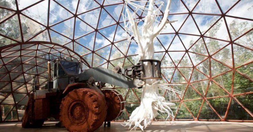 Museu Inhotim Minas Gerais Belo Horizonte
