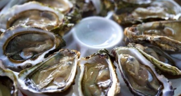 Idosos, cuidado com as ostras