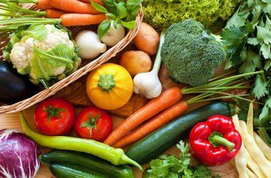 nutrientes para memória dos idosos