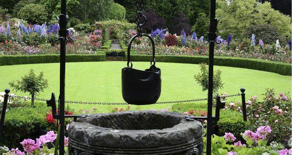 jardim da casa da vovó