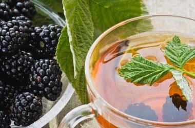 chá de folhas de amora para idosos