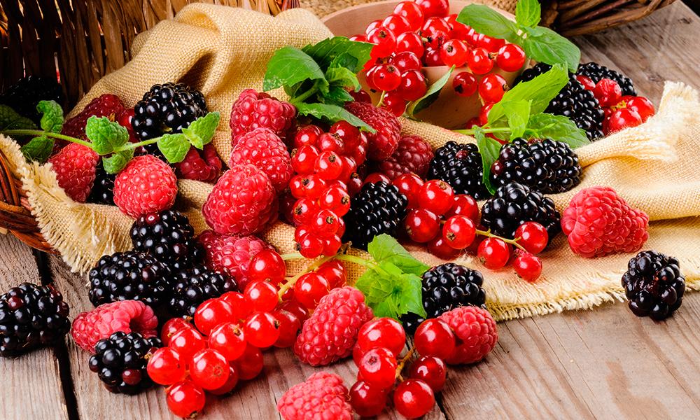 frutas vermelhas para idosos
