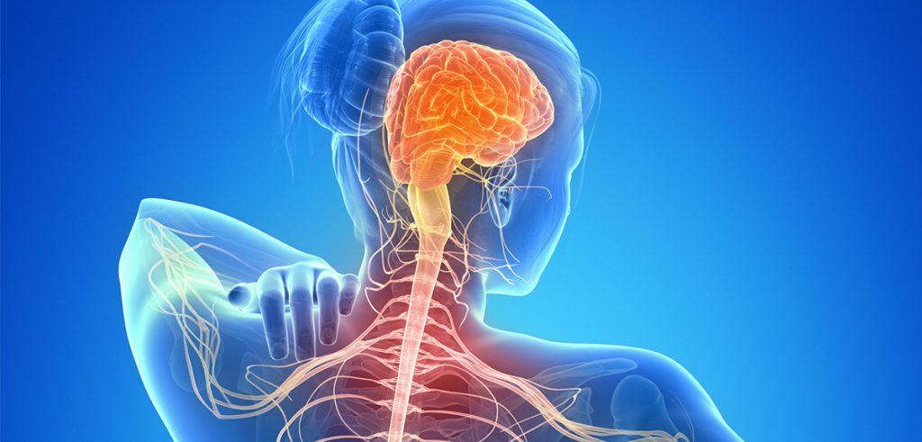 esclerose múltipla na terceira idade