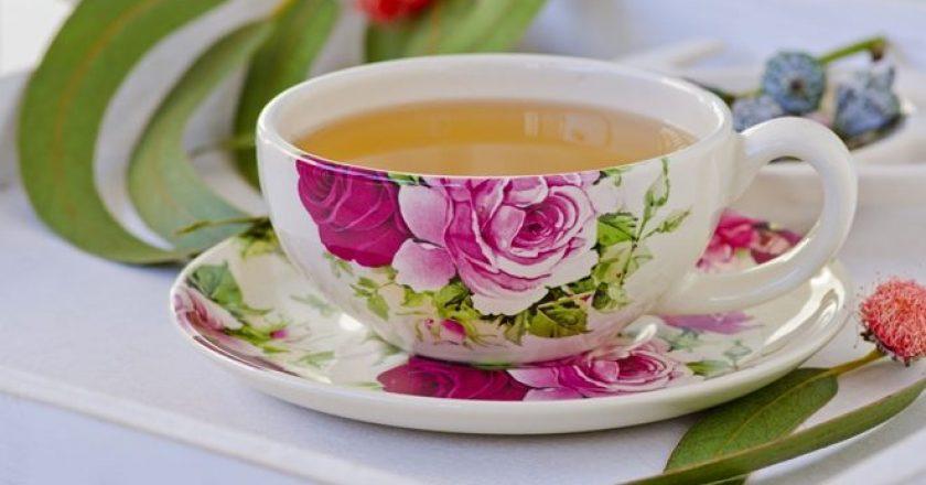 chá de eucalipto para terceira idade