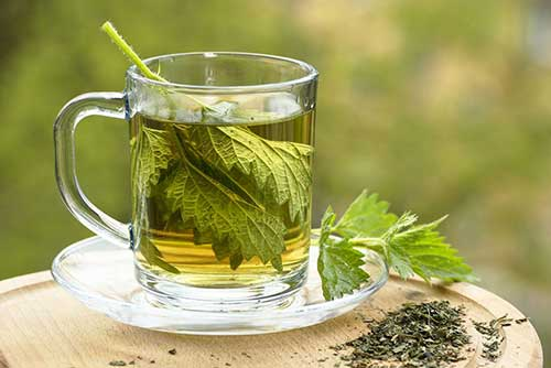 chá de mirra para terceira idade