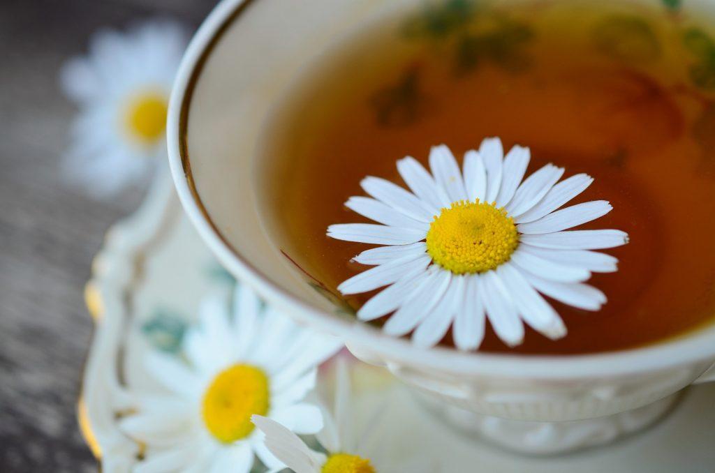 chá de camomila para a terceira idade