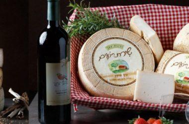 os melhores queijos do mundo