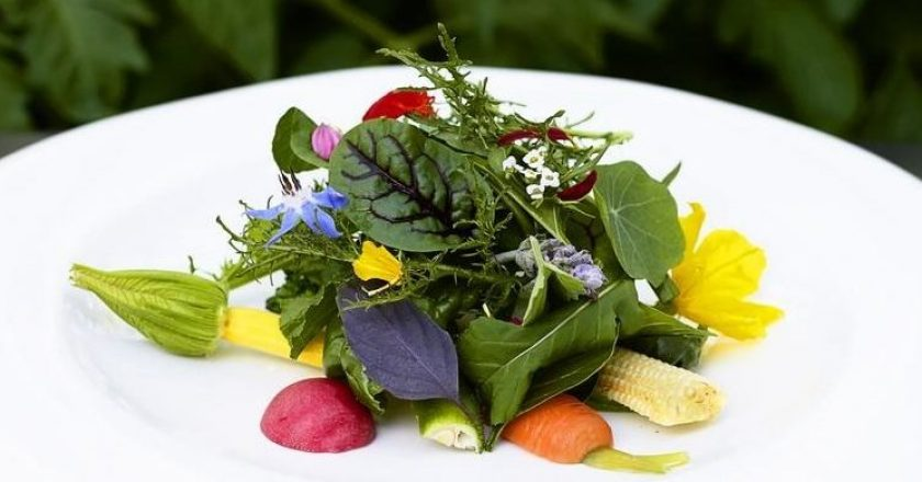 Plantas Comestíveis não convencionais (PANCS)