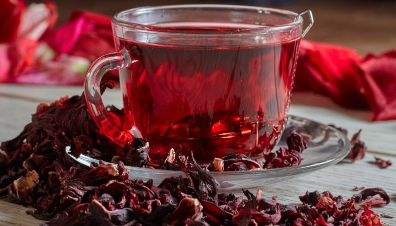 chá de hibisco, o aliado dos idosos