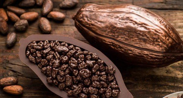 mitos e verdades sobre o chocolate