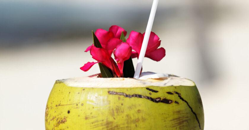 Alimento foto criado por vwalakte - br.freepik.com